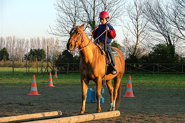 equitation cheval